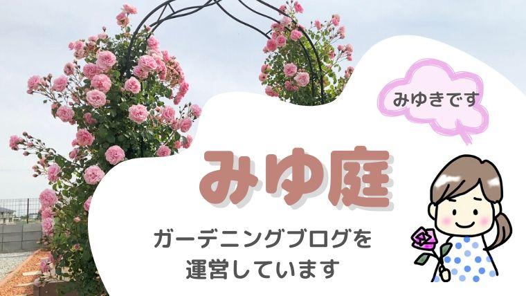 みゆ庭|ガーデニングブログ