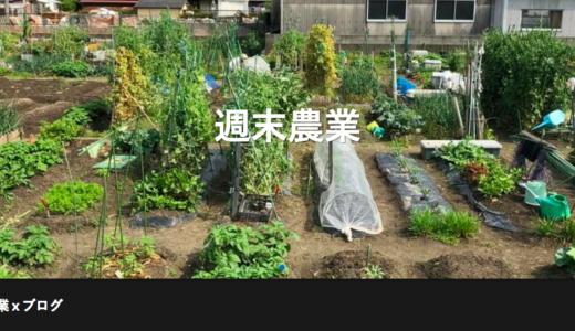 福岡の週末農業で収益化|とう